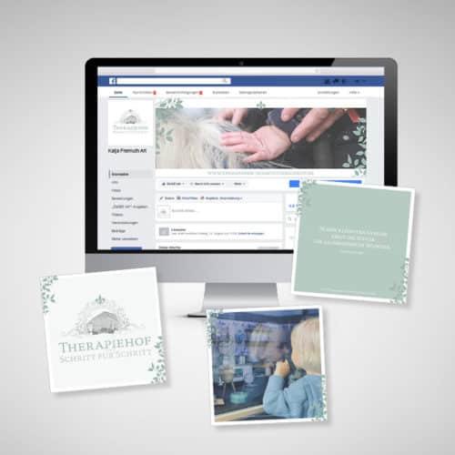 Designstuuv Werbeagentur Referenz Therapiehof Schritt für Schritt Social Media