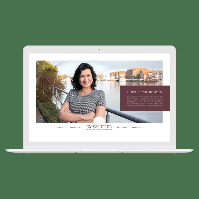 Designstuuv Werbeagentur Referenz Emssteuer Website